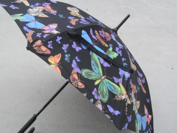 My beautiful butterfly umbrella...perfect for the summer rain!